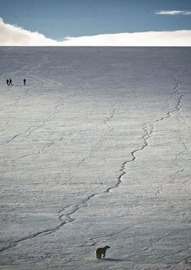 North Pole and Arctic